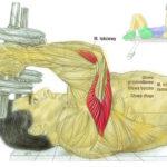 Trening przedramion (triceps) ze sztangielkami na leżąco