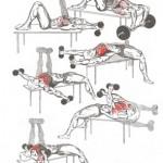 Trzy główne błędy treningowe