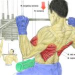 Plecy, grzbiet - ściąganie drążka do klatki na wyciągu górnym