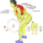 Ćwiczenia na plecy - podciąganie sztangi w opadzie tułowia