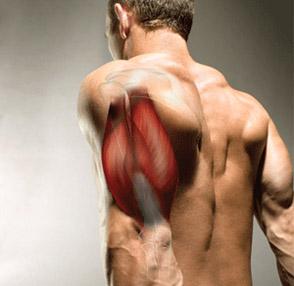 Pompowanie po treningu – triceps