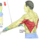 Plecy, grzbiet - Przyciąganie drązka do bioder prostymi ramionami