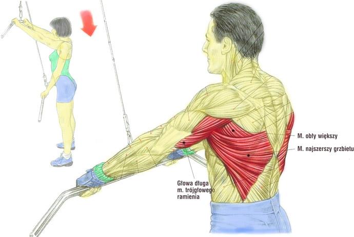 Plecy, grzbiet – Przyciąganie drązka do bioder prostymi ramionami