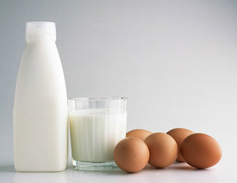 białko-dieta