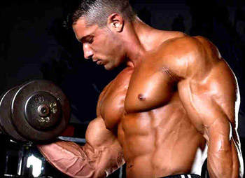 Duże bicepsy
